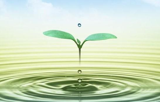 还有与水处理技术配套的菌剂,如清洗剂,预膜剂,消泡剂,杀生增效剂